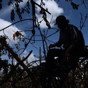 Luego de que quemaran su improvisada casa, guatemaltecos le han brindado ayuda
