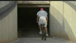 El valor de la bicicleta de Piqué