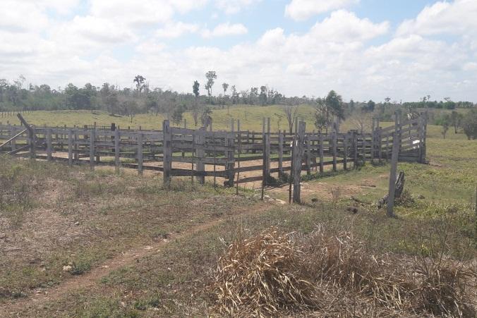 Persona usurpaba terrenos en la Reserva de la Biosfera Maya
