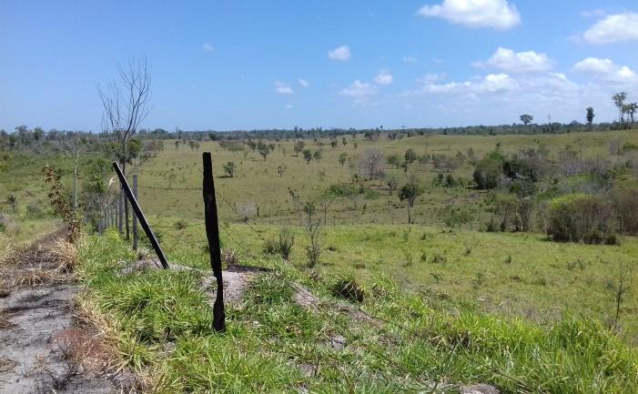 Área de la Reserva de Biosfera Maya