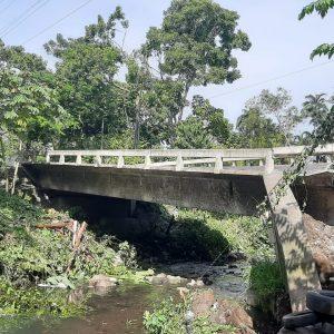 Colapsa puente La Naisa