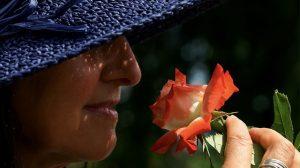 Olor de las flores