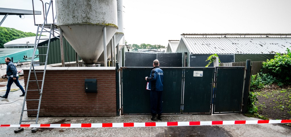 Granja de visones en Holanda