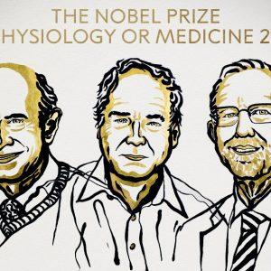 Harvey Alter, Charles Rice y Michael Houghton, ganadores del premio Nobel de Medicina 2020