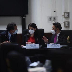 Misión de OEA en el Congreso