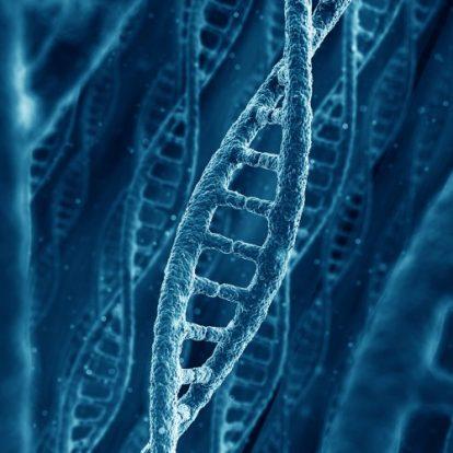 El Laboratorio Nacional de Salud (LNS) realiza estudios para establecer la composición genética de la nueva variante del COVID-19.
