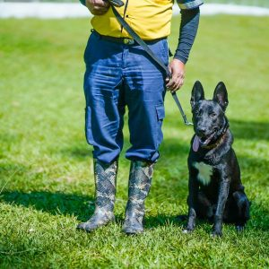 Unidad canina se incorpora a Seguridad Municipal de Santa Catarina Pinula
